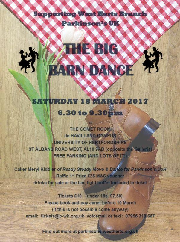 Barn dance colour flyer